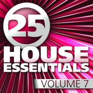 25 House Essentials 7 (2010)